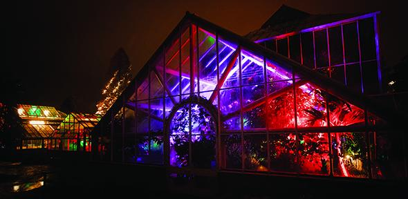 greenhouse in lights